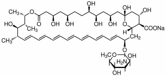 Amphotericin B (Fungizone)