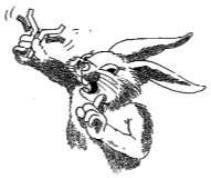Antigen immunotherapy rabbit